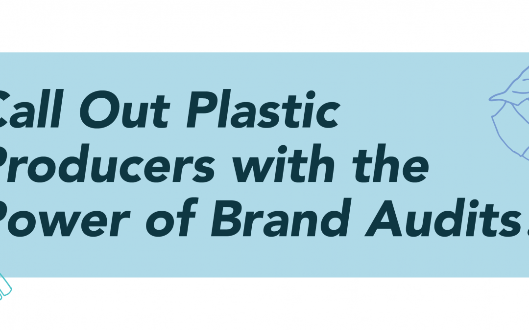 Call Out Plastic Producers with the Power of Brand Audits
